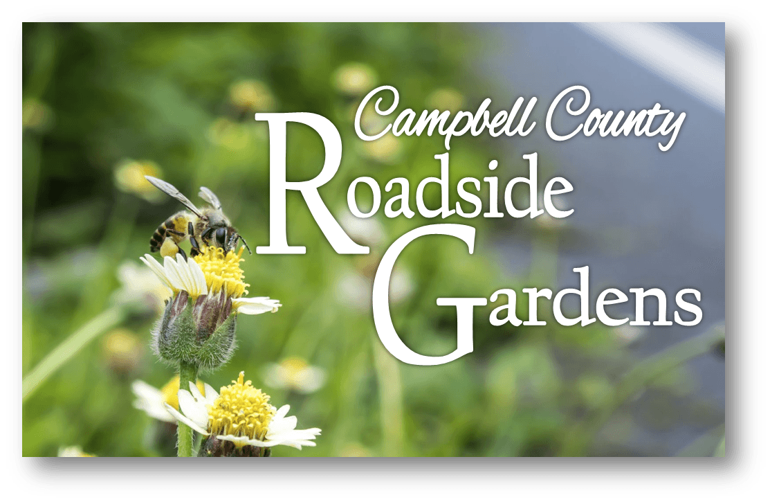 Roadside Gardens Header